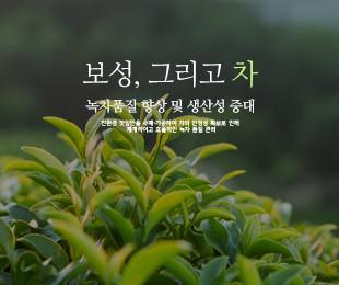 보성차생산자조합 홈페이지 제작 - http://www.boseongtea.or.kr/