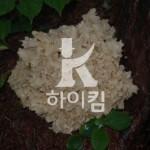 하이킴 홈페이지 제작 - http://hi-kim.com/