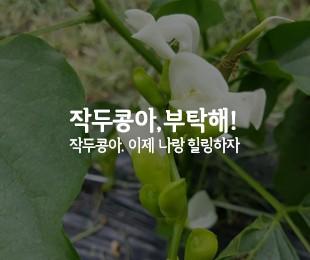 심곡농원 홈페이지 제작 - http://www.xn--399aq2gevs5ud.com/